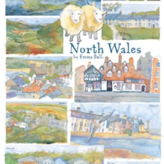 tea towels North Wales
